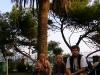 italia_2005_104.jpg